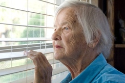 What You Can Do When You Notice A Senior Loved One Needs Help